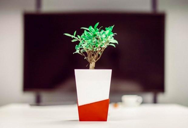 ¿Saldrás pronto de viaje? Esta macetas inteligentes riegan automáticamente tus plantas - kivi-1024x694