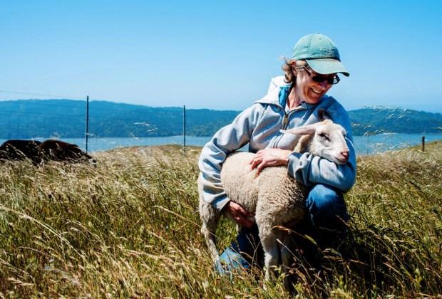 Este recorrido en California es el sueño de todo amante del queso - trail-1024x694