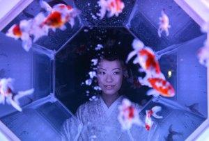 ¿Arte y peces? La exhibición que ha causado sensación en Japón