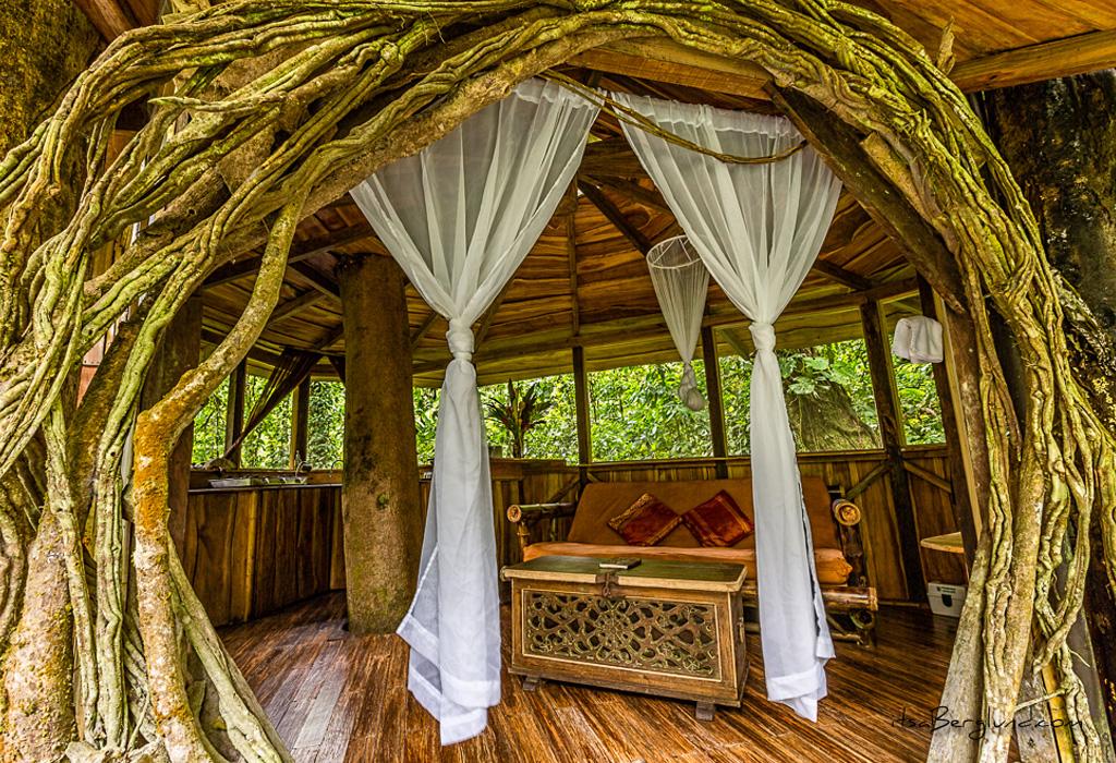 Las mejores casas de árbol alrededor del mundo que podrás rentar - fincabellavista