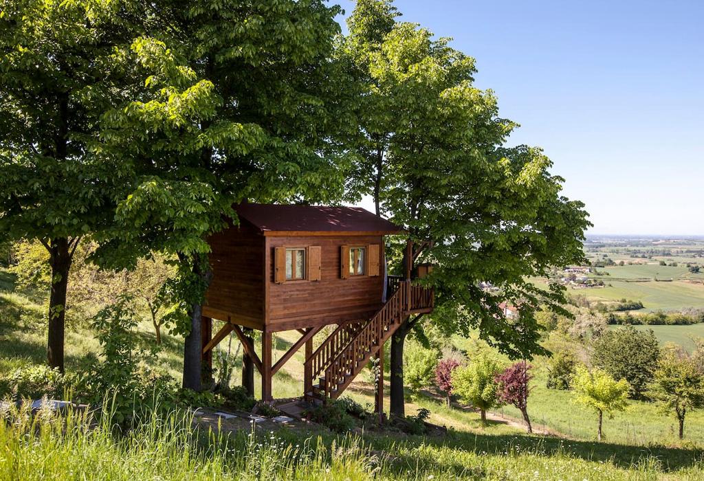 Las mejores casas de árbol alrededor del mundo que podrás rentar - itlaiath