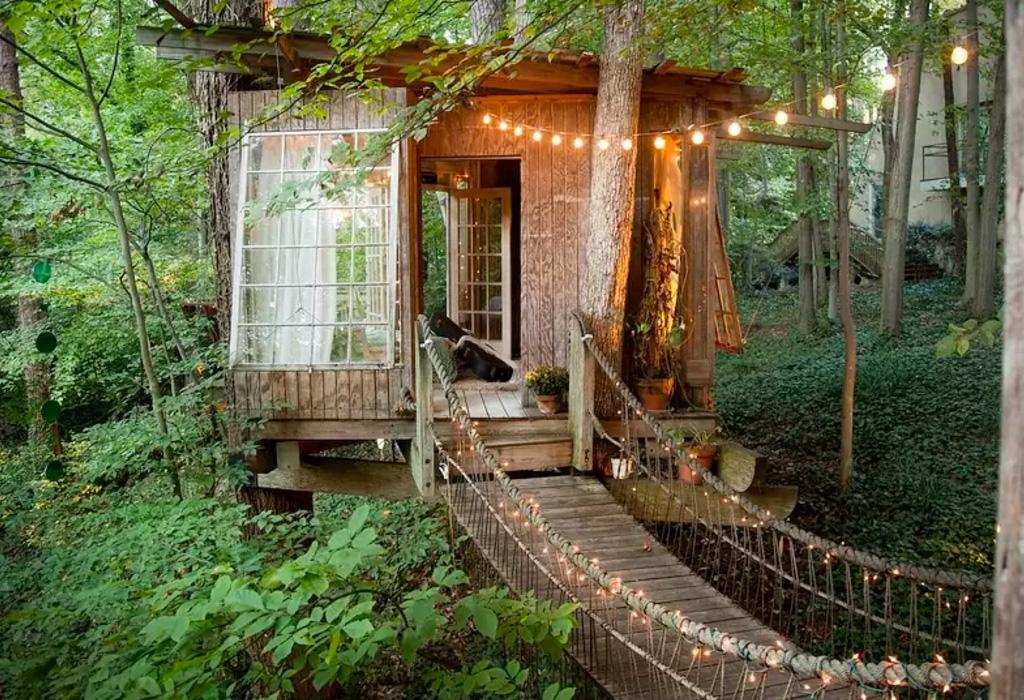 Las mejores casas de árbol alrededor del mundo que podrás rentar