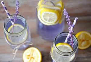 Tenemos la receta para que prepares un exquisito gin con lavanda