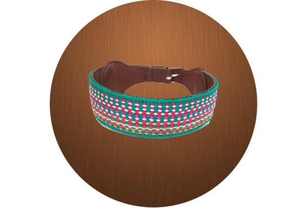 ¡Ya puedes vestir a tu mascota con artesanía mexicana! - xuxo-1024x694