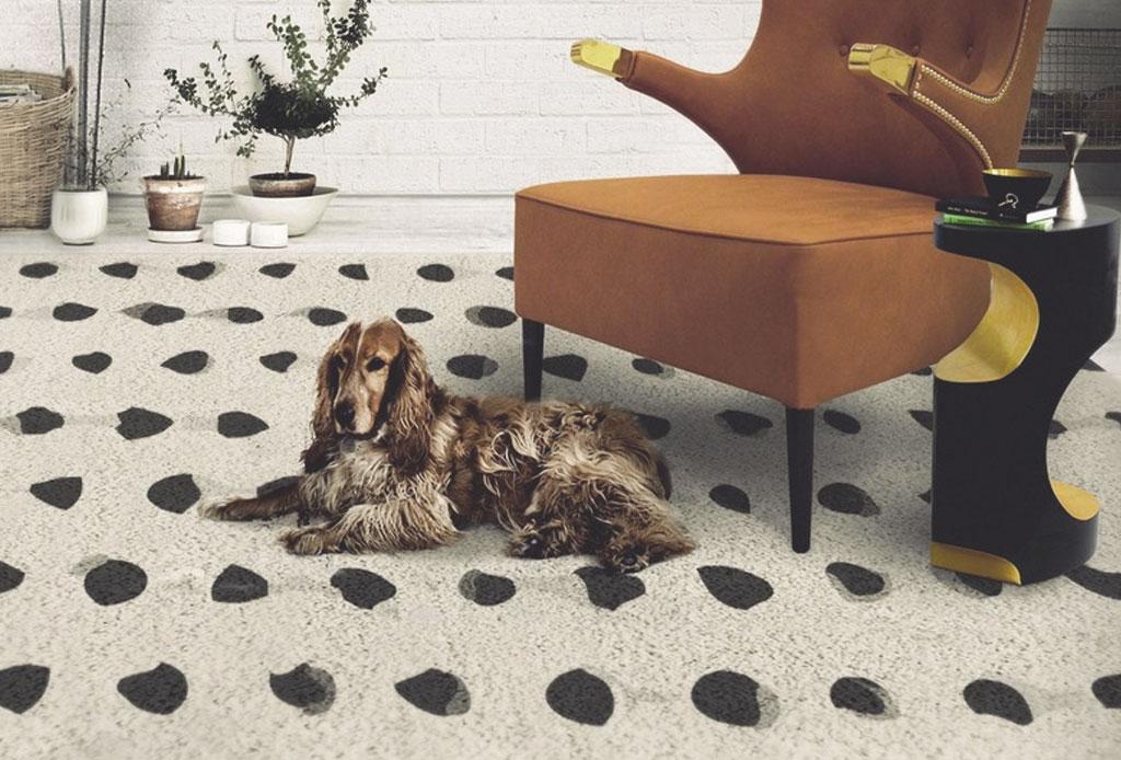 ¿Quieres agregar un tapete decorativo? Te decimos cuál debes elegir - tapete-8