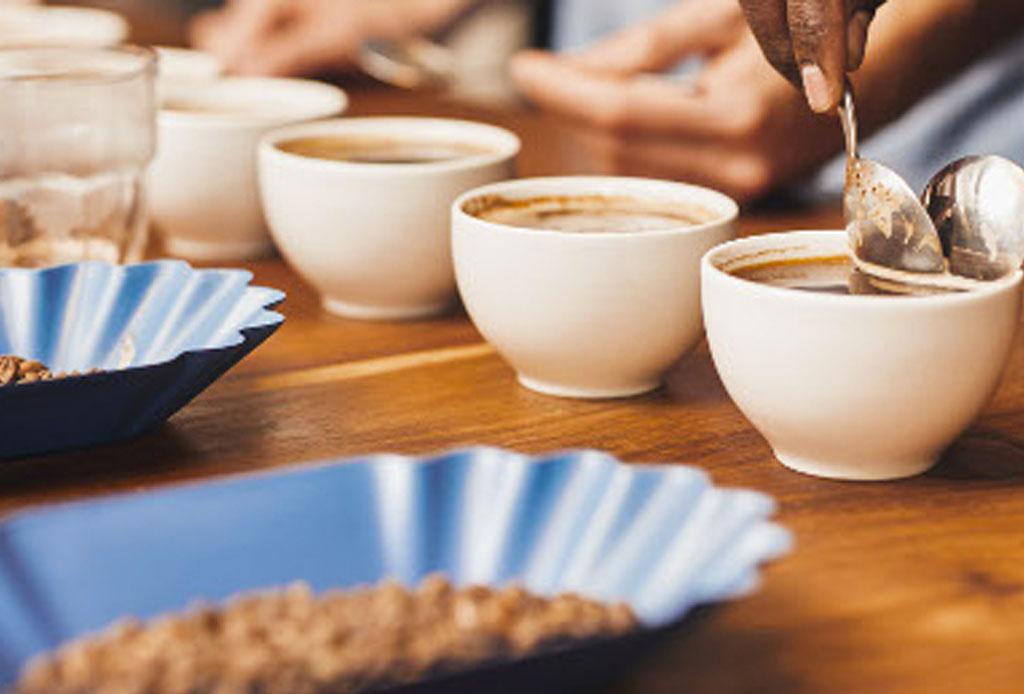 ¿Sabes qué es el café de especialidad? - cafe_de_especialidad_1