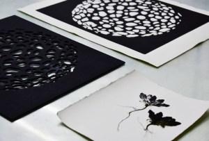 Taller de Impresión Botánica y Microscópica