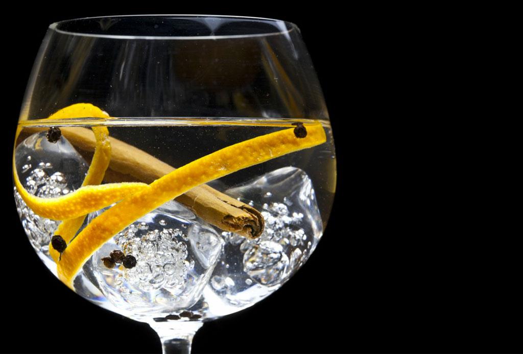 ¡Haz gin & tonic de sabores! Aquí te compartimos tres recetas facilísimas - gin_tonic_3