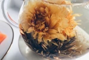 Te decimos dónde conseguir en la CDMX el té artesanal ¡que florece!