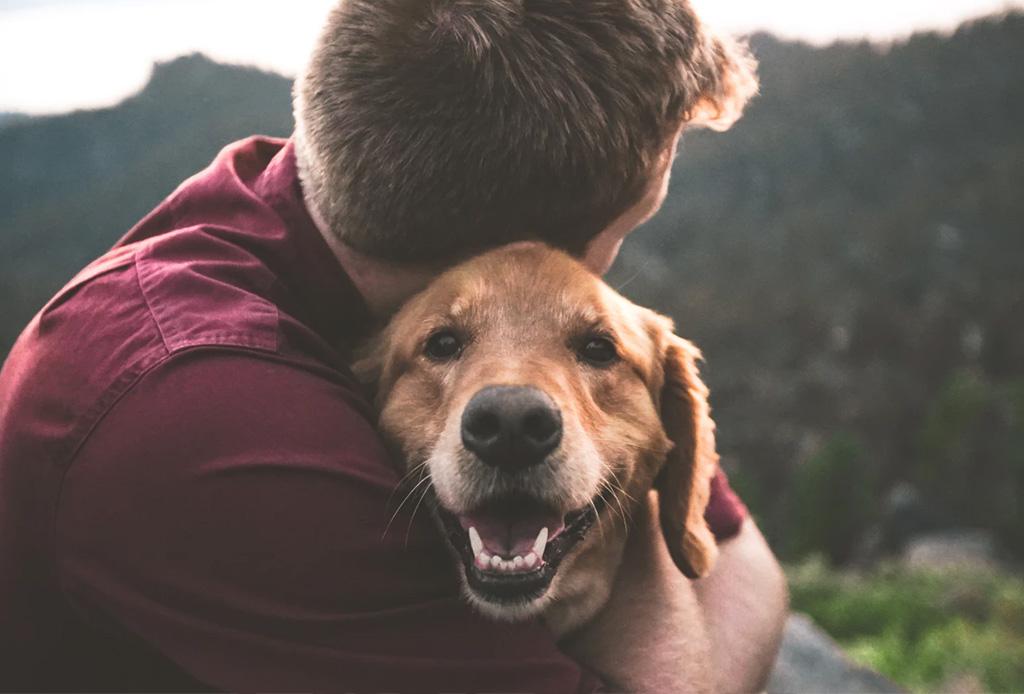 «Dogs» es la nueva serie documental de Netflix que te hará llorar de la emoción