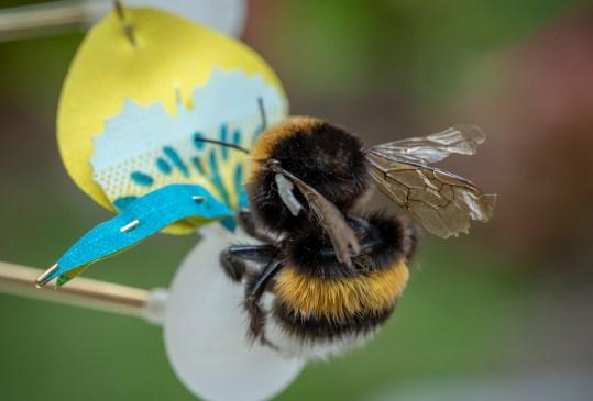 Ya existen las primeras flores artificiales para alimentar insectos en las grandes ciudades - flores-artificiales-3d-food-for-buzz-matilde-boelhouwer-3-300x203