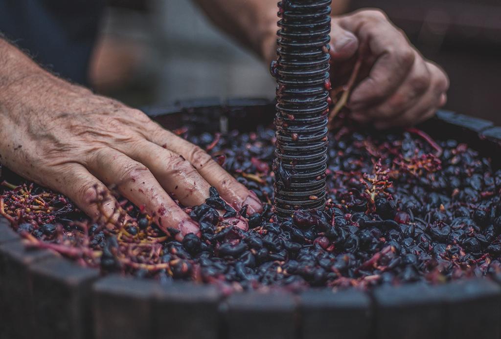 Qué es el vino natural y porque tienes que conocerlo - vino-natural-2