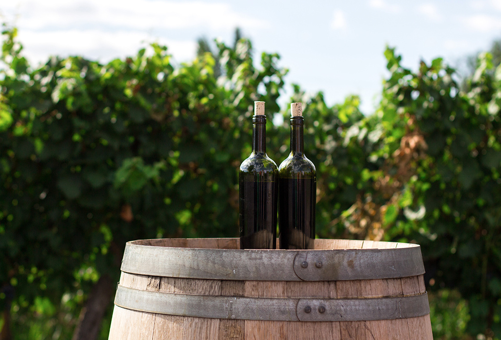 Valle de Guadalupe, el segundo mejor destino para tomar vino en 2020