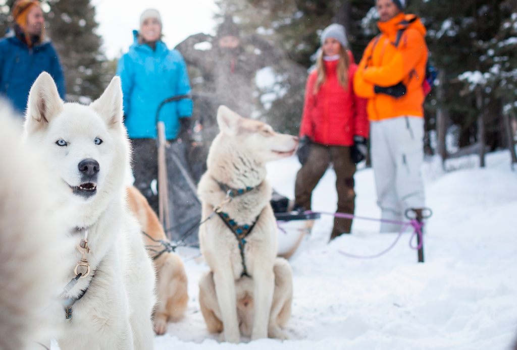4 razones por las que TIENES que visitar Lake Louise en invierno - lake-louise-4