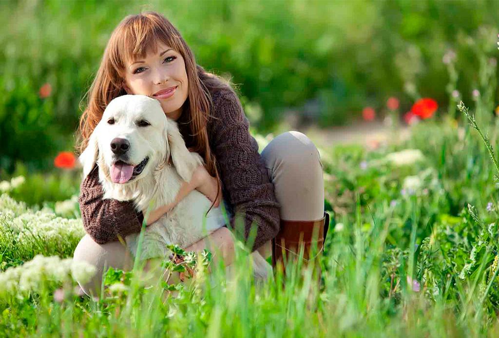 8 reglas que debes seguir para criar a un perro sano y saludable - reglas-cuidar-perro-4
