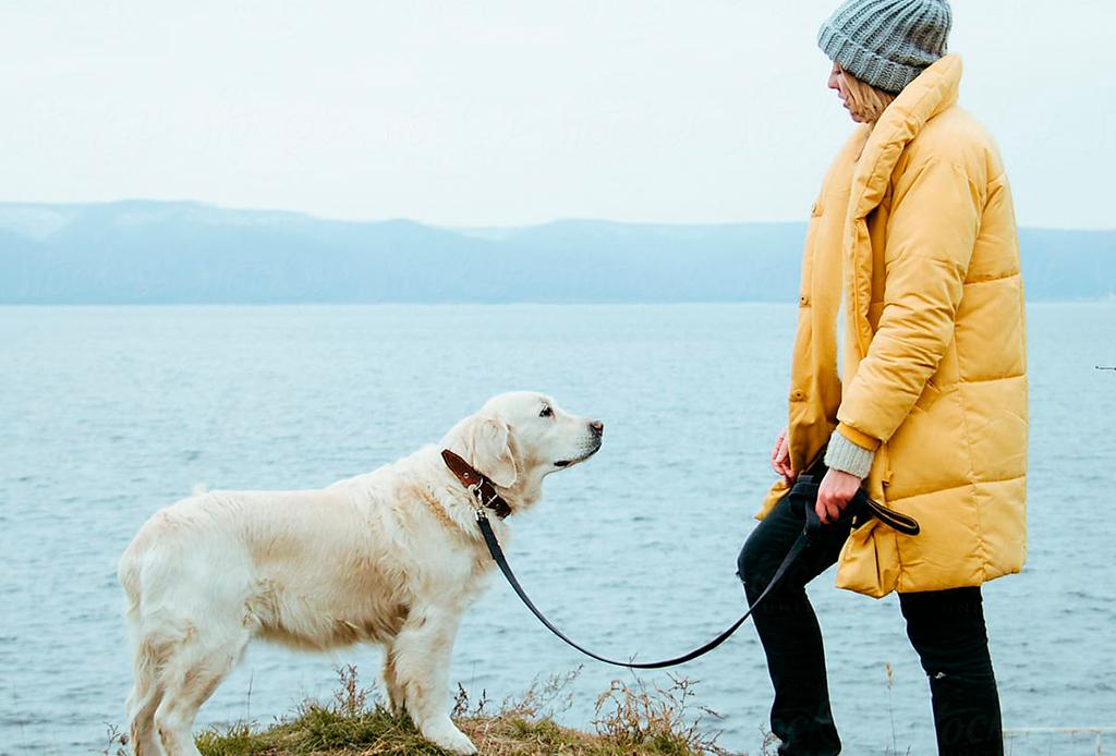 7 pasos para educar a tu perro a que camine/corra a tu lado - caminar-con-perro-2