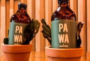 La cerveza hecha con aguacate ya es una realidad