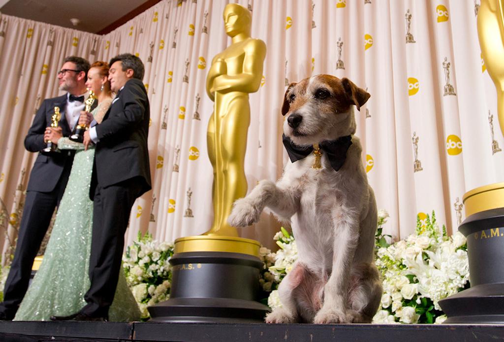 10 perros en la historia del cine que se merecen un 'Dogscar'