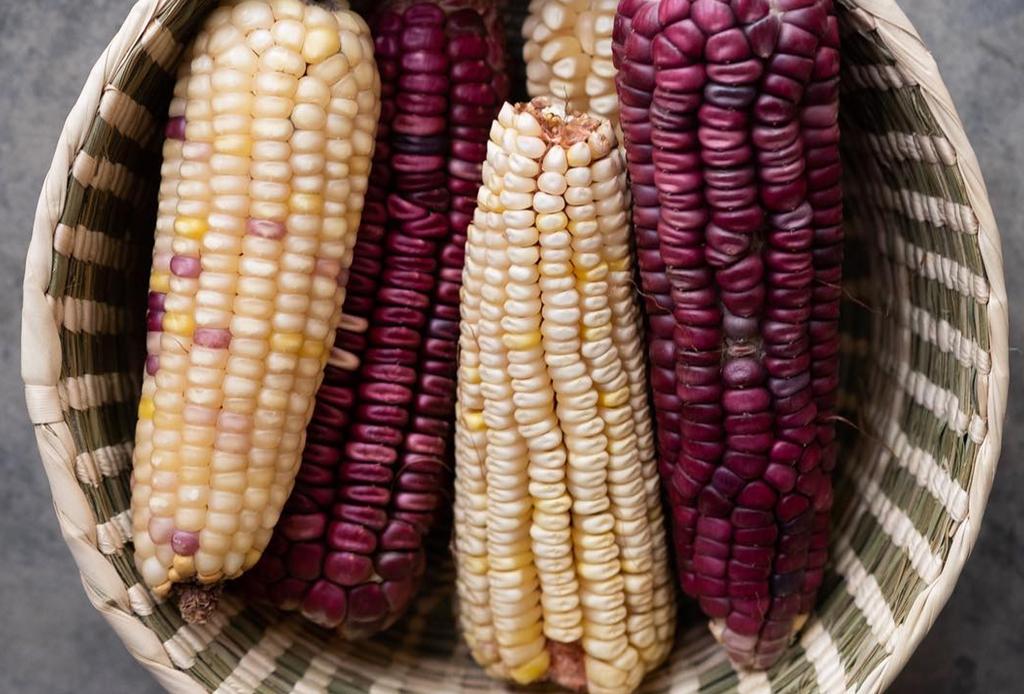 En estos lugares de la CDMX se les rinde culto al maíz y la tortilla, ¡tienes que conocerlos YA!