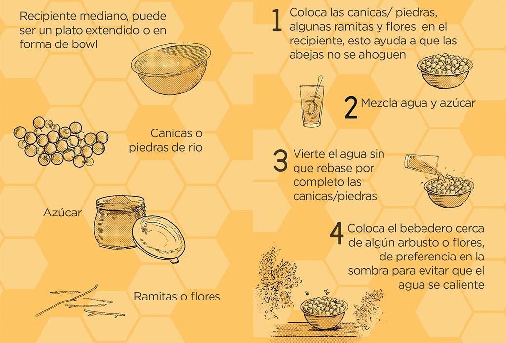 Así es como puedes ayudar a las abejas, este insecto vital en el planeta tierra - abejas-1024x694