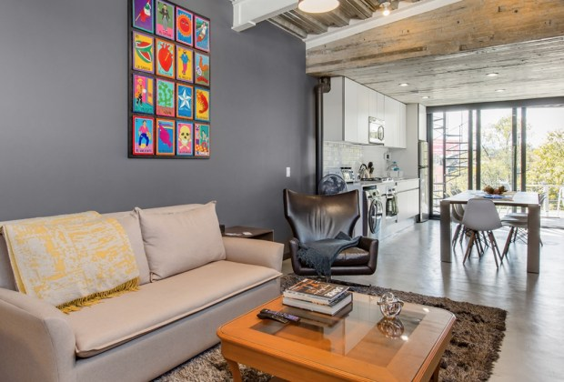¿Buscas Airbnb pet friendly en la CDMX? Estas son las mejores opciones - loft-con-terraza-privada-condesa