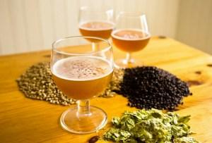 Taller de Cerveza Artesanal - taller-cerveza-artesanal-isla