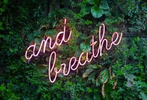 7 pasos para calmar una mente ansiosa