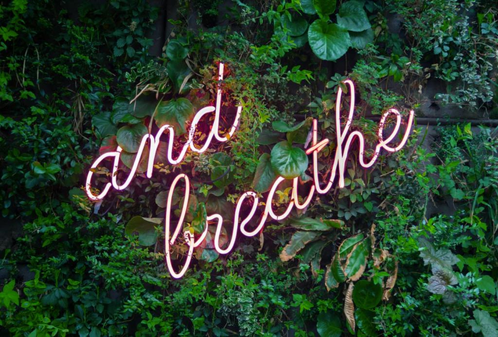 Todo lo que necesitas saber acerca de la meditación introspectiva - pasos-para-calmar-una-mente-ansiosa-1024x694