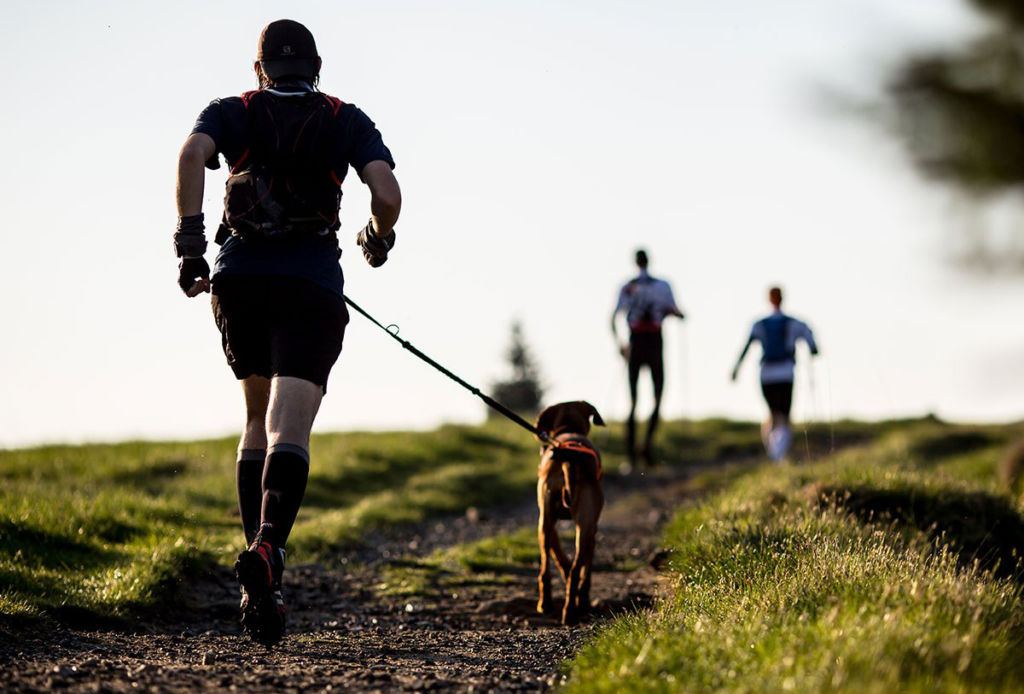 Simples consejos para combatir el blue monday - correr-con-perro-1024x694