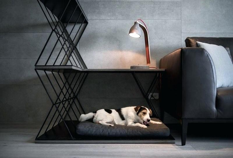 Tips para mantener a tu perro feliz en un departamento - lugar-perro