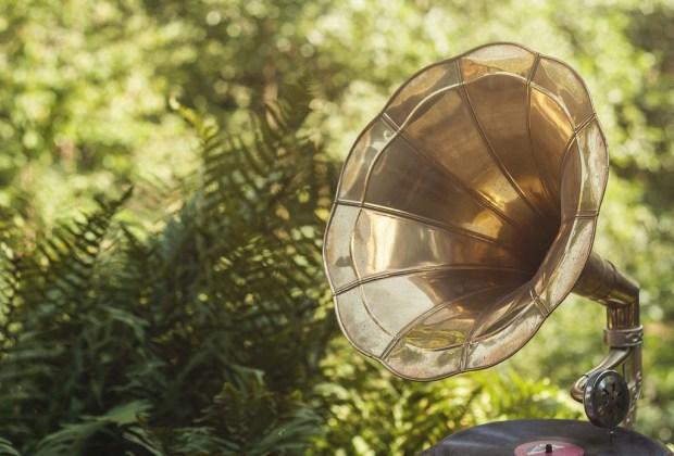 """Cosas """"extrañas"""" que puedes hacer para cuidar mejor tus plantas - musica-para-plantas"""