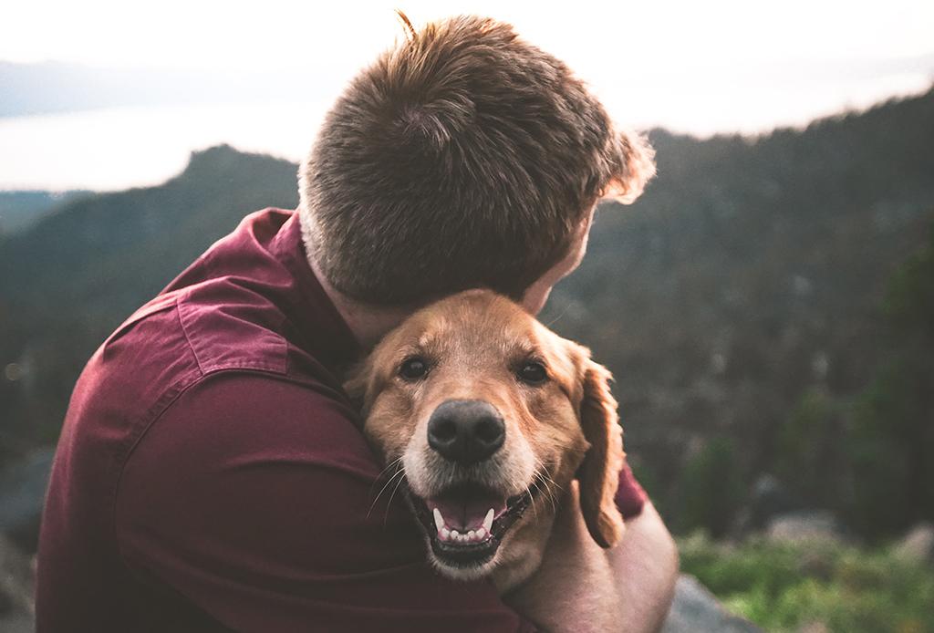 Los beneficios para la salud de tener una mascota