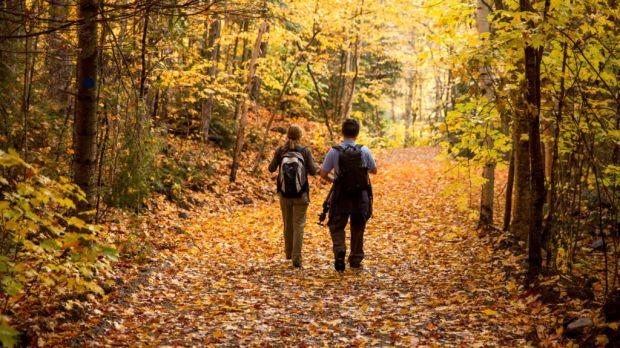 ¡Cumple con tus propósitos 2019! Estas actividades físicas te ayudarán a lograrlo - senderismo
