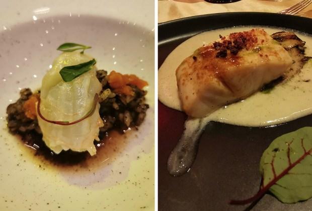 Lo mejor de Vallarta Nayarit Gastronómica en 7 platillos - vng-2019-hard-rock-hotel-vallarta