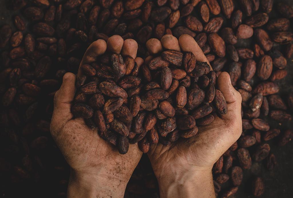 Feria del maíz, cacao y chocolate - feria-maiz-cacao