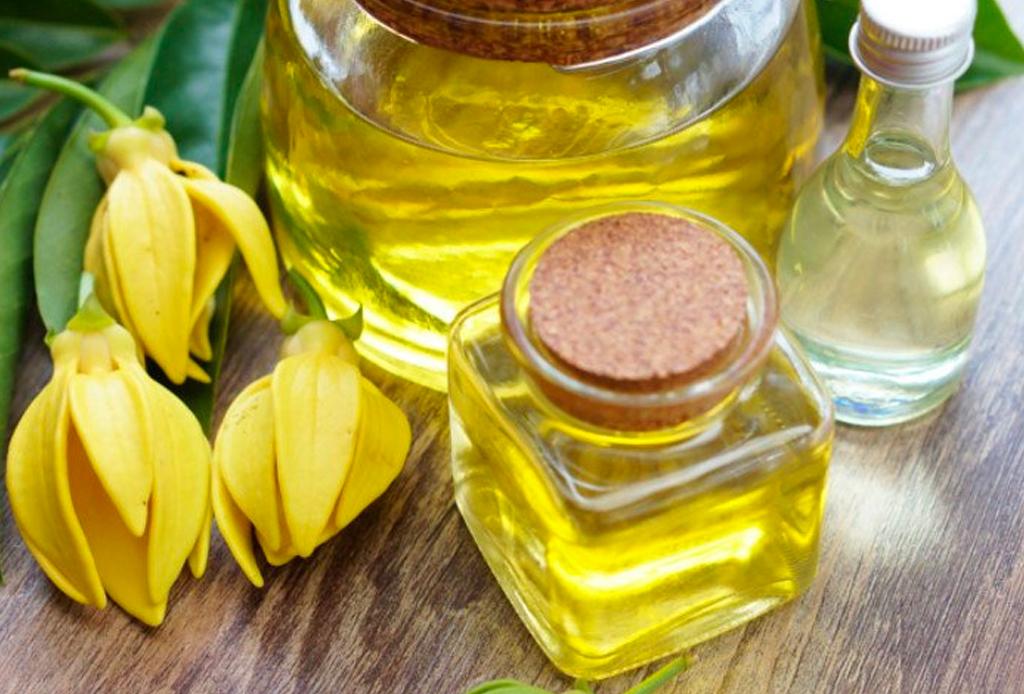 Así es como puedes usar el aceite esencial de Ylang Ylang para revivir tu piel - ylang-ylang-3-1024x694