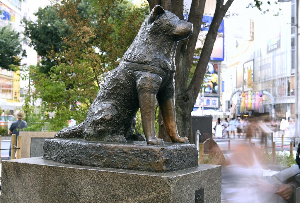 72 horas en... Tokio, la guía definitiva para disfrutar la ciudad - tokio-15