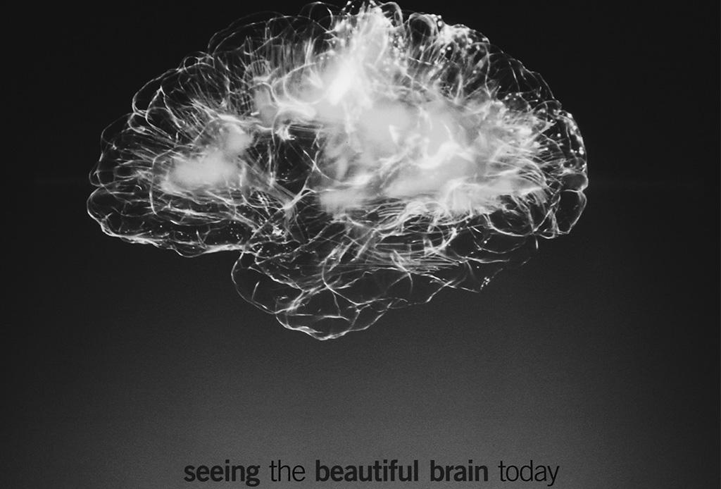 ¿Se está encogiendo nuestro cerebro? - cerebro-3