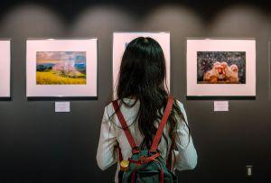 10 galerías de arte en la CDMX que probablemente aún no conoces