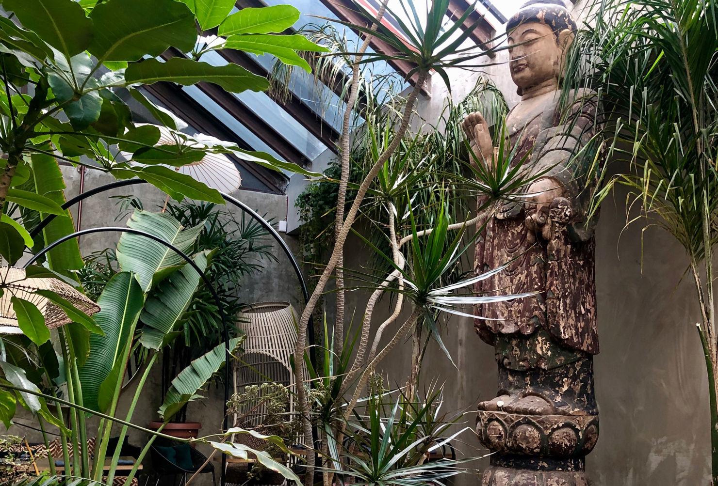 Nuestro HOT SPOT favorito de MARZO es Plantasia Café, descubre por qué