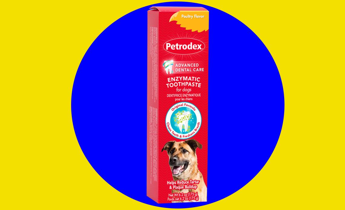 5 productos para cuidar la salud bucal de tu perro - salud-bucal-perro-pasta-dientes