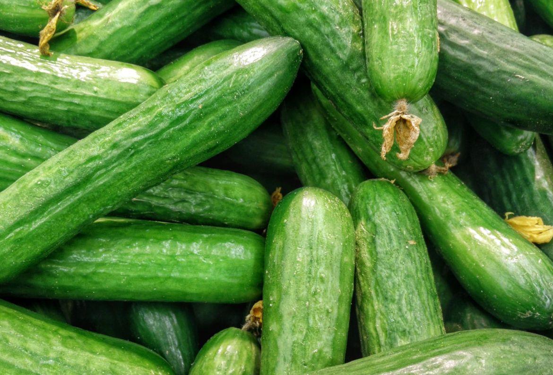 Si quieres hacer tu huerto casero, estas son las frutas y verduras más fáciles de cosechar - frutas-y-verduras-faciles-de-cosechar-pepinos