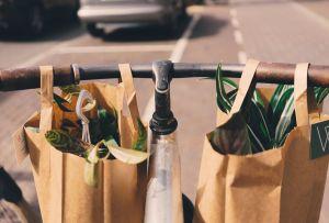 Si te urge adoptar un par de plantas, estas tiendas tienen servicio a domicilio