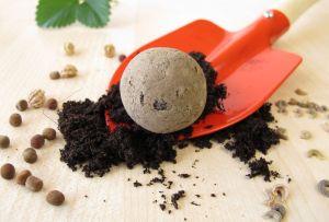 ¿Sabes qué es una seed bomb? Te enseñamos cómo hacer una de flores silvestres