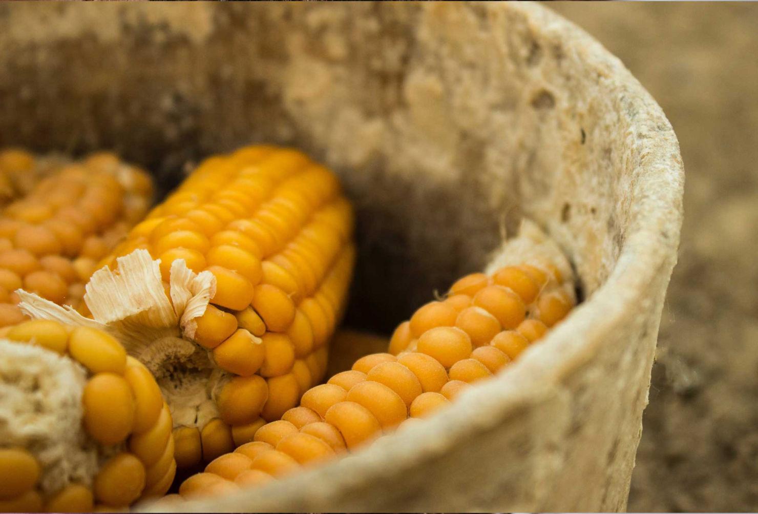 Conoce los detalles del primer museo de la gastronomía mexicana