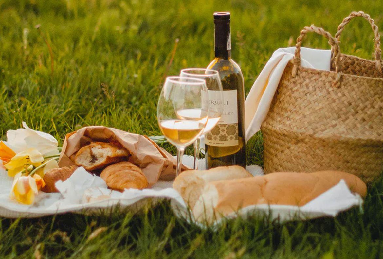 5 básicos para un picnic perfecto en tu jardín - picnic-en-casa-vino