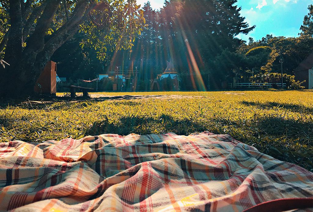 4 Life hacks para: organizar un picnic seguro en estos días - picnic-pandemia-2