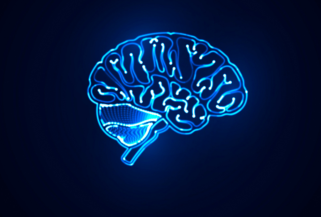¿Dieta mental? Conoce los pensamientos que alimentan tu mente - tres-cerebros-2