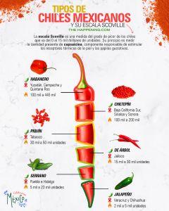 ¿Conoces los chiles mexicanos y su escala de picor?