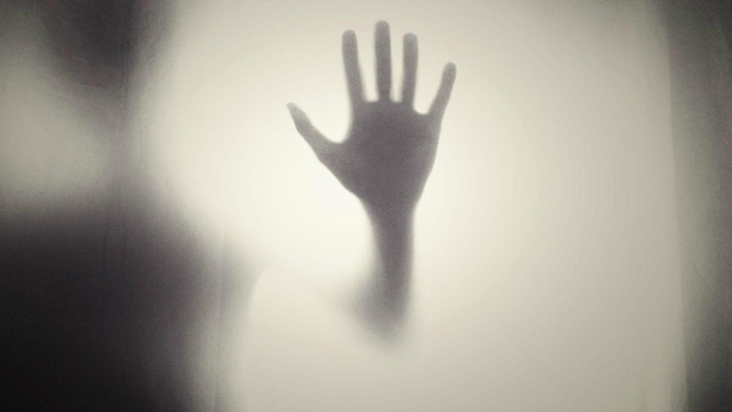 Libros básicos de thriller psicológico que debes leer